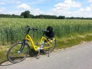 bike-1467236_1280